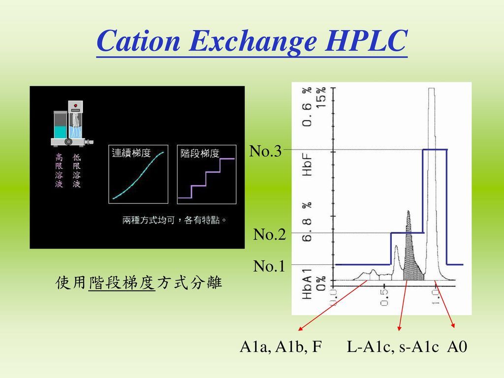Cation Exchange HPLC No.3 No.2 No.1 使用階段梯度方式分離