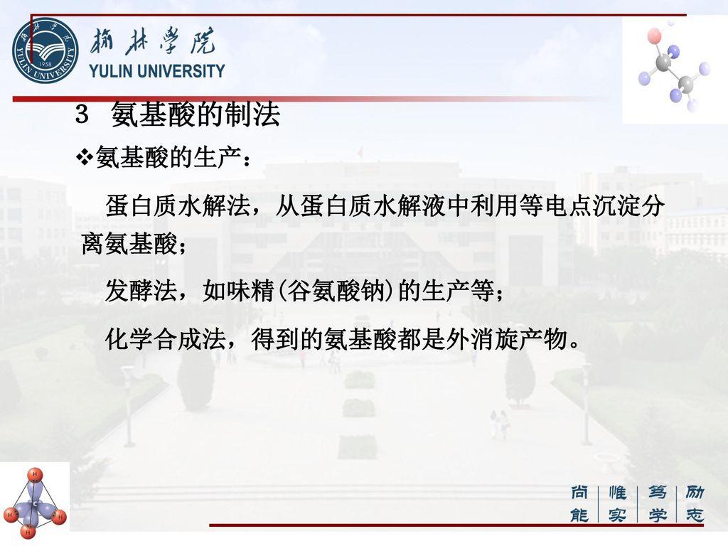 谷氨酸等电点_有机化学 主讲教师 霍文兰 教 材 曾昭琼 主编. - ppt download