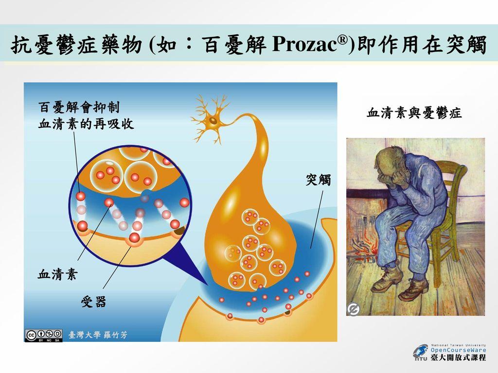 抗憂鬱症藥物 (如:百憂解 Prozac®)即作用在突觸