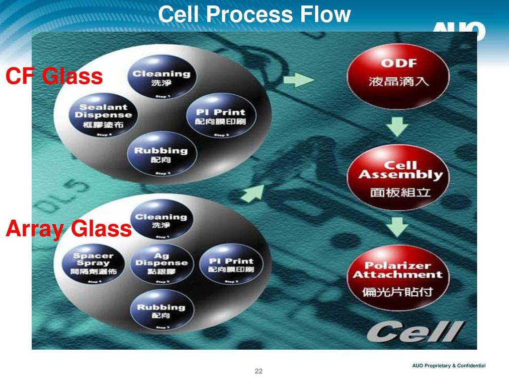 Cell Process Flow CF Glass Array Glass