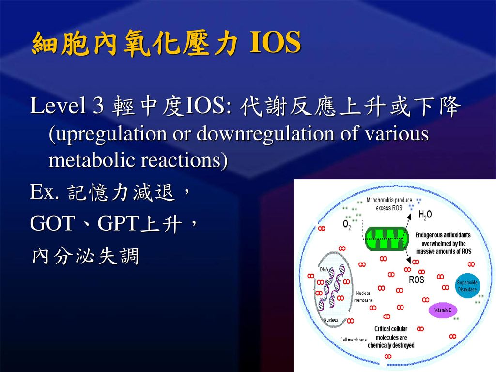 細胞內氧化壓力 IOS Level 3 輕中度IOS: 代謝反應上升或下降 (upregulation or downregulation of various metabolic reactions)