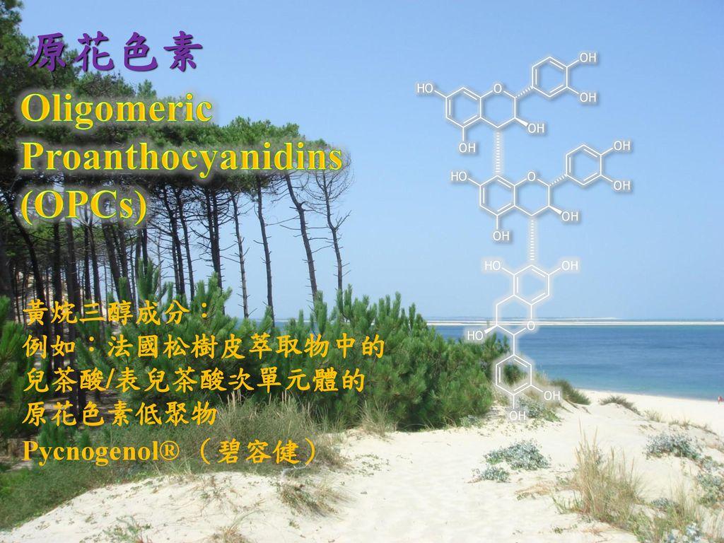 原花色素 Oligomeric Proanthocyanidins (OPCs) 黃烷三醇成分: 例如:法國松樹皮萃取物中的