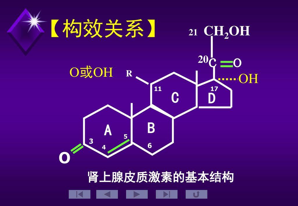 【构效关系】 O c o 21 CH2OH R 3 4 5 17 11 6 肾上腺皮质激素的基本结构 A B C D 20 O或OH OH