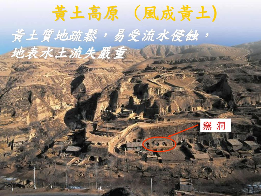 黃土高原 (風成黃土) 黃土質地疏鬆,易受流水侵蝕, 地表水土流失嚴重 窯 洞