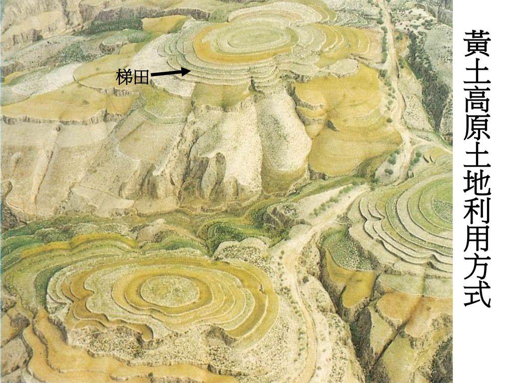 黃土高原土地利用方式 梯田