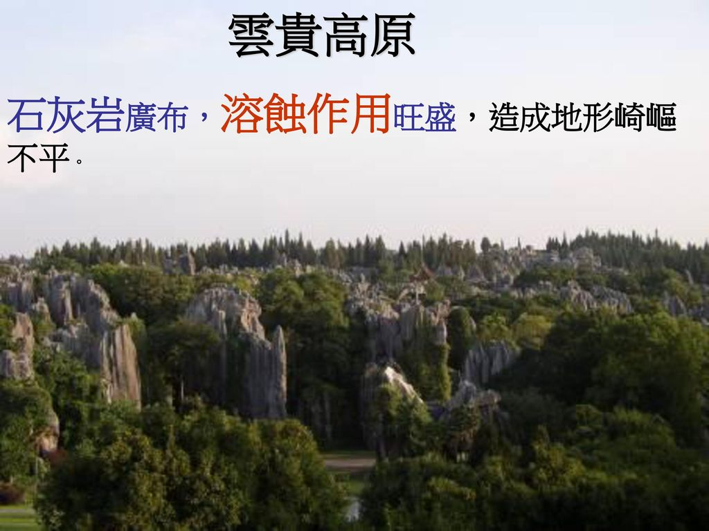雲貴高原 石灰岩廣布,溶蝕作用旺盛,造成地形崎嶇不平。