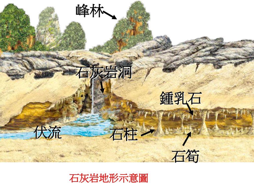 峰林 石灰岩洞 鍾乳石 伏流 石柱 石筍 石灰岩地形示意圖