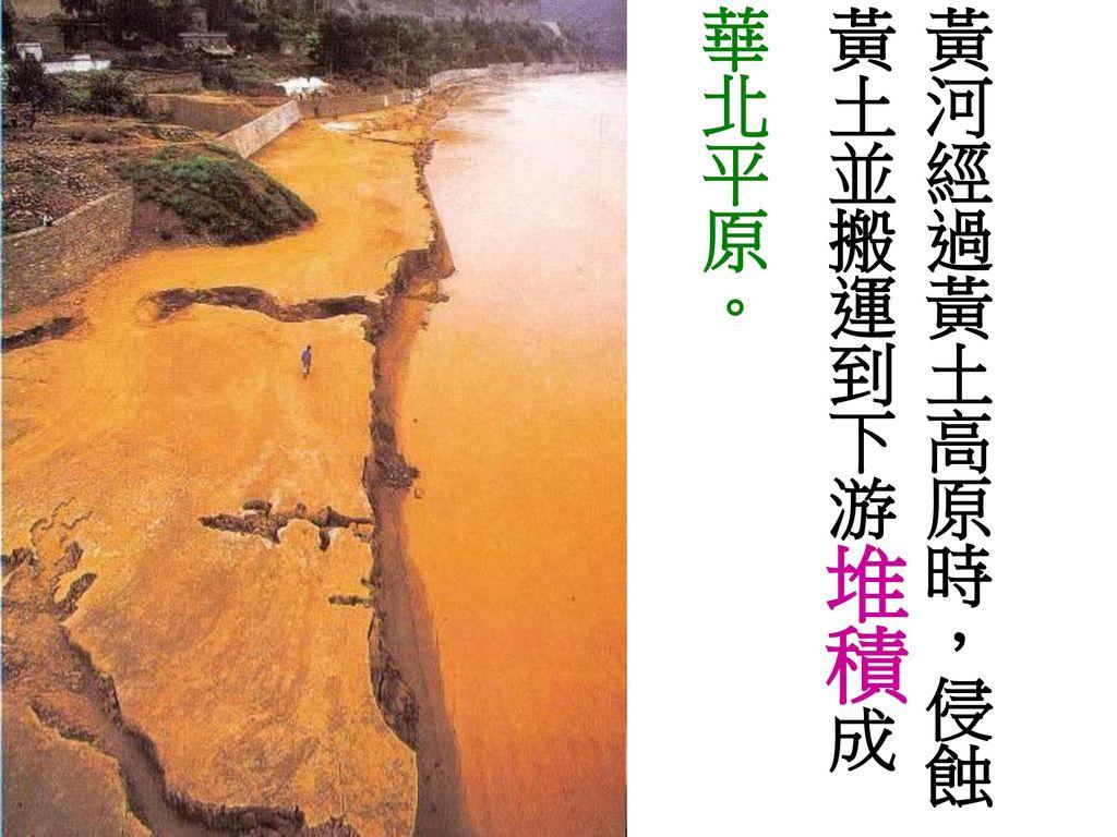 黃河經過黃土高原時,侵蝕黃土並搬運到下游堆積成