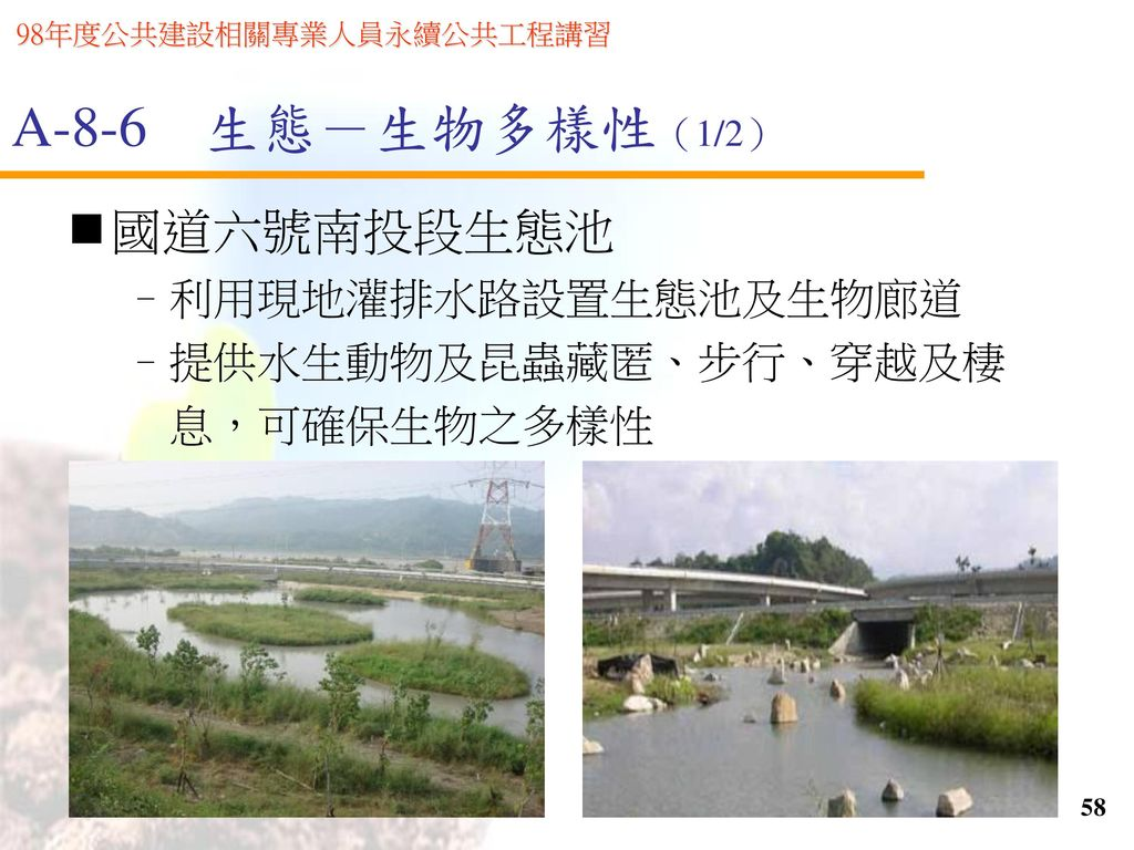 A-8-6 生態-生物多樣性(1/2) 國道六號南投段生態池 利用現地灌排水路設置生態池及生物廊道 提供水生動物及昆蟲藏匿、步行、穿越及棲