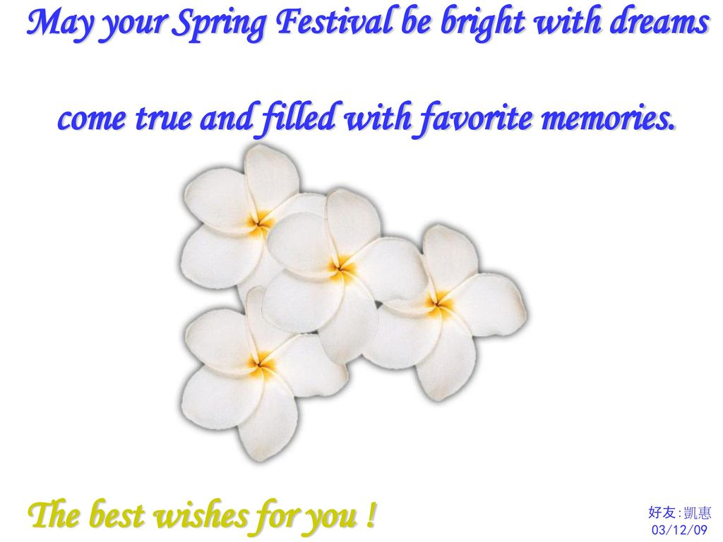 May your Spring Festival be bright with dreams