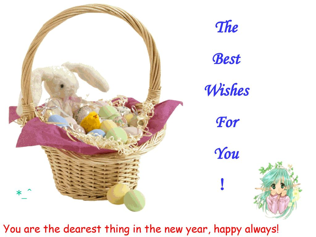 The Best Wishes For You !