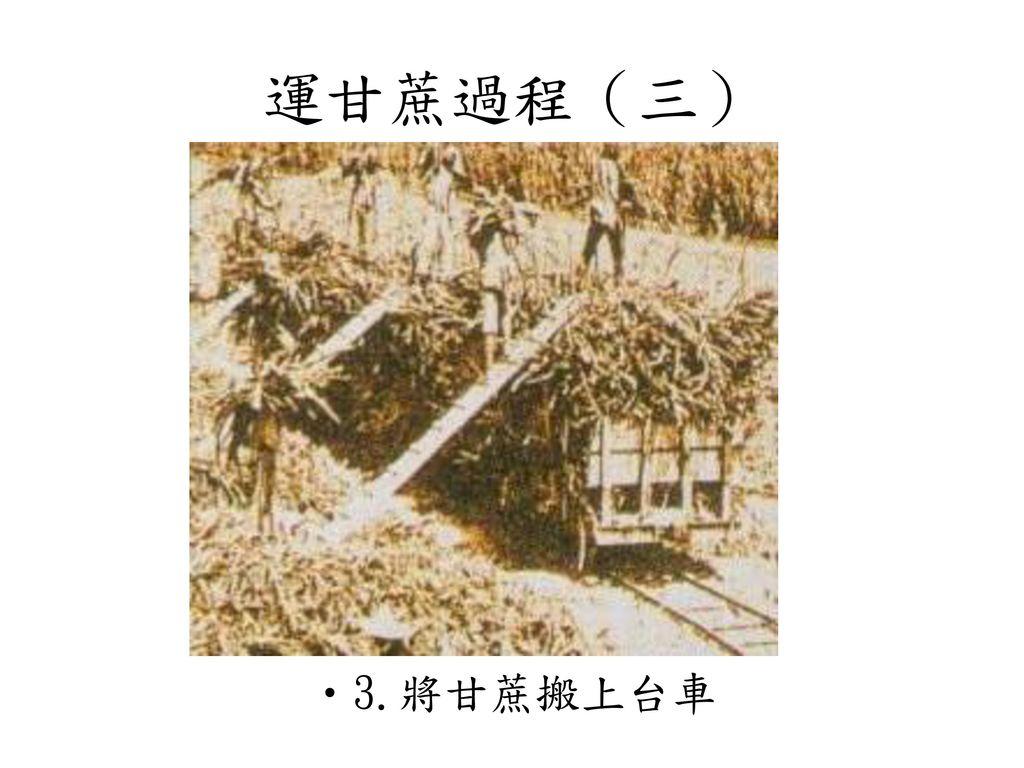 運甘蔗過程(三) 3.將甘蔗搬上台車