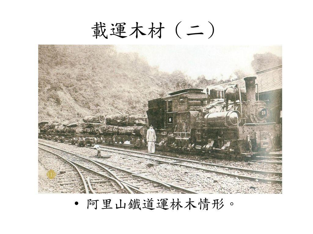 載運木材(二) 阿里山鐵道運林木情形。