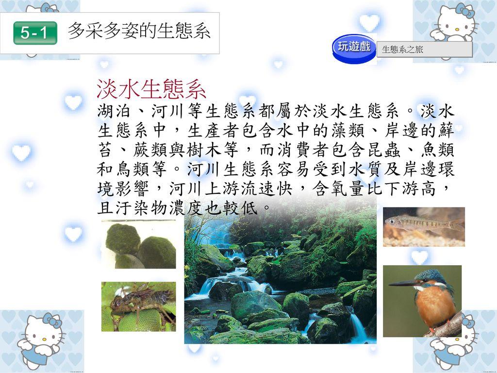 多采多姿的生態系 生態系之旅. 淡水生態系.