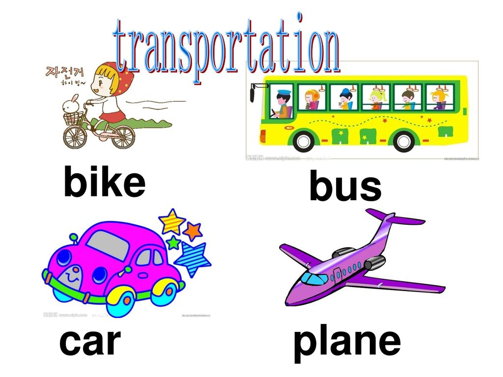 transportation bike bus car plane