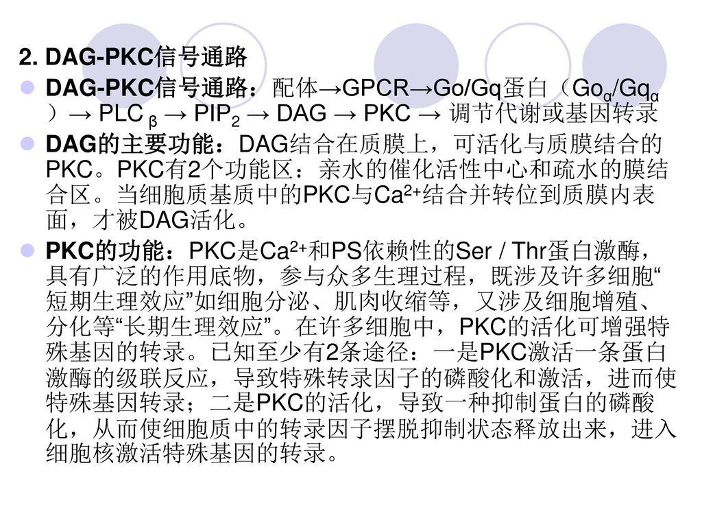 2. DAG-PKC信号通路 DAG-PKC信号通路:配体→GPCR→Go/Gq蛋白(Goα/Gqα)→ PLC β → PIP2 → DAG → PKC → 调节代谢或基因转录.