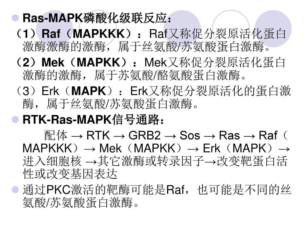 Ras-MAPK磷酸化级联反应: (1)Raf(MAPKKK):Raf又称促分裂原活化蛋白激酶激酶的激酶,属于丝氨酸/苏氨酸蛋白激酶。 (2)Mek(MAPKK):Mek又称促分裂原活化蛋白激酶的激酶,属于苏氨酸/酪氨酸蛋白激酶。