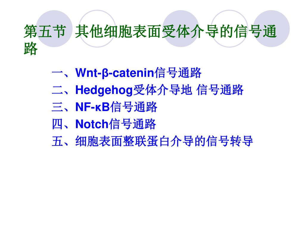 第五节 其他细胞表面受体介导的信号通路 一、Wnt-β-catenin信号通路 二、Hedgehog受体介导地 信号通路