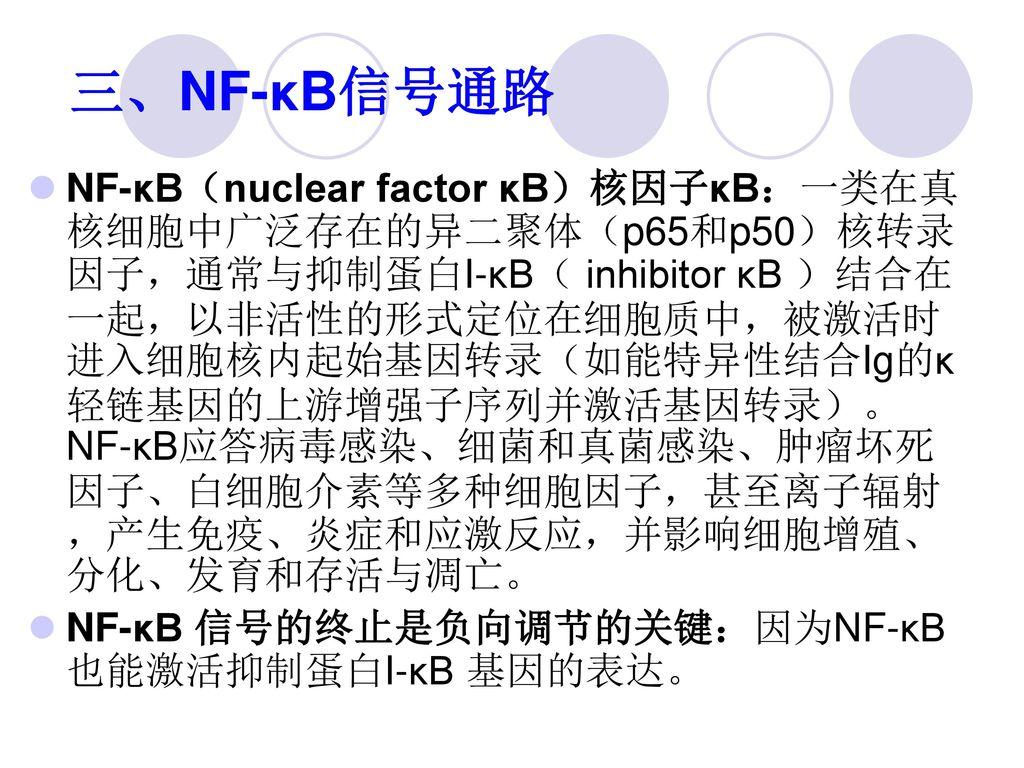 三、NF-κB信号通路