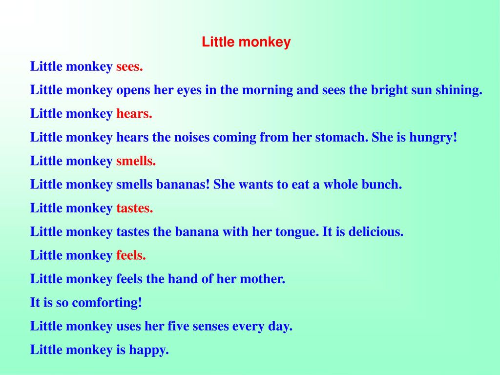 Little monkey Little monkey sees.