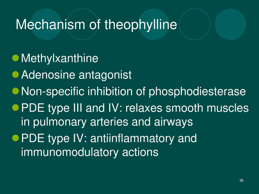 Mechanism of theophylline