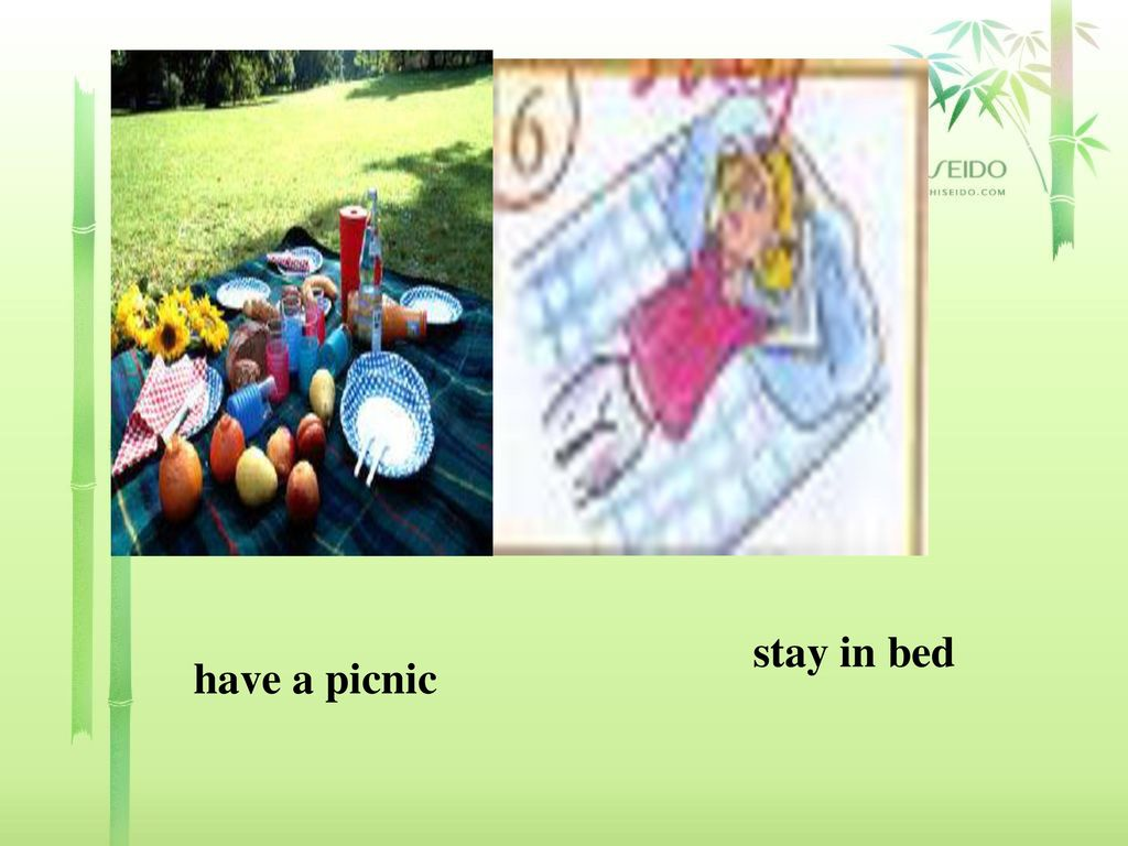 stay in bed have a picnic