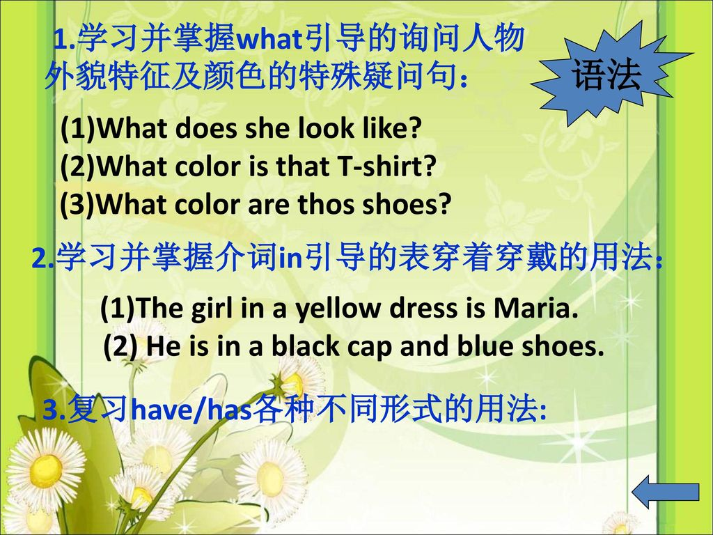 语法 (1)What does she look like (2)What color is that T-shirt