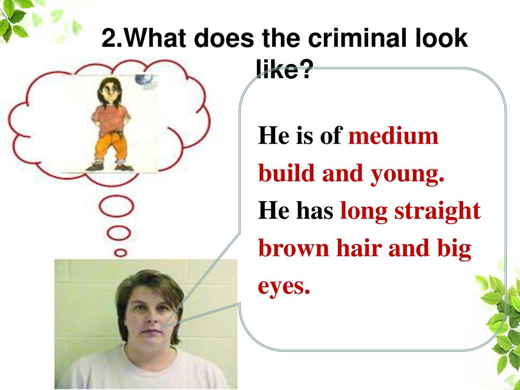 2.What does the criminal look like