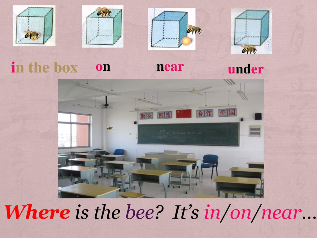 Where is the bee It's in/on/near…
