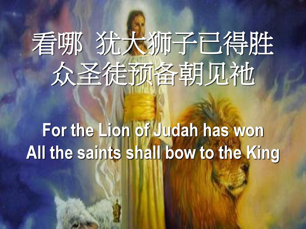 For the Lion of Judah has won All the saints shall bow to the King