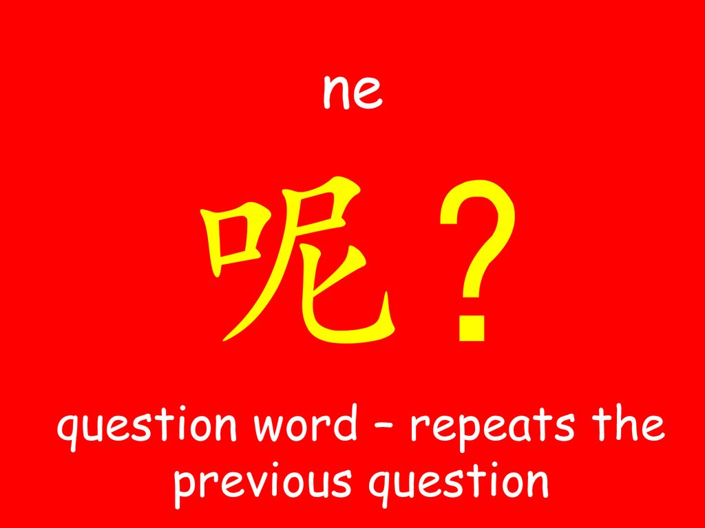 question word – repeats the previous question