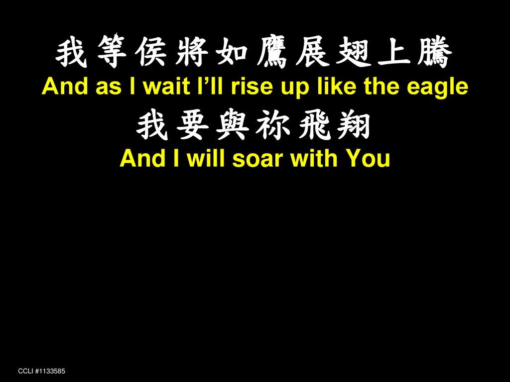 And as I wait I'll rise up like the eagle