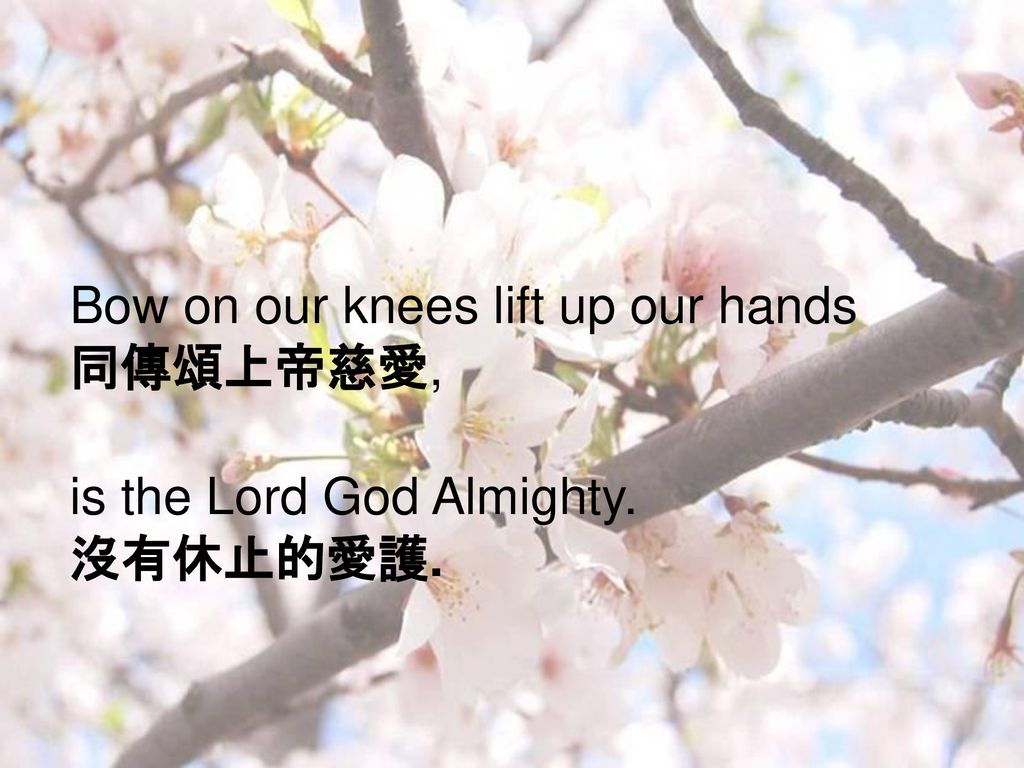 Bow on our knees lift up our hands 同傳頌上帝慈愛,