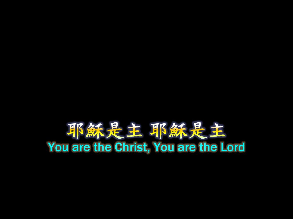 You are the Christ, You are the Lord