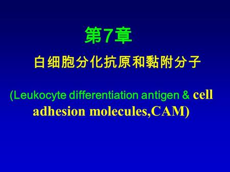 白细胞分化抗原和黏附分子 第7章第7章 (Leukocyte differentiation antigen & cell adhesion molecules,CAM)