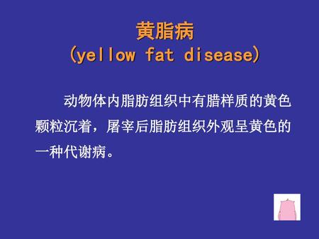 黄脂病 (yellow fat disease)