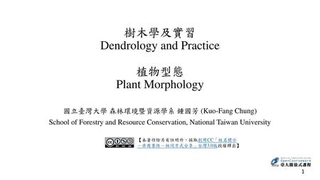 樹木學及實習 Dendrology and Practice 植物型態 Plant Morphology