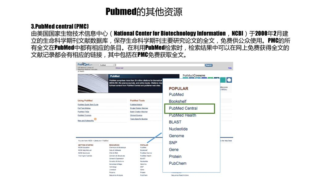 Pubmed的其他资源 3.PubMed central (PMC)