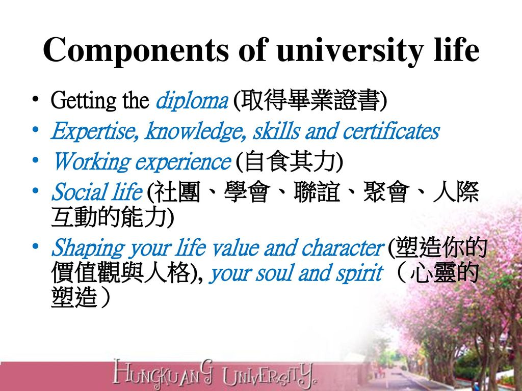 Components of university life