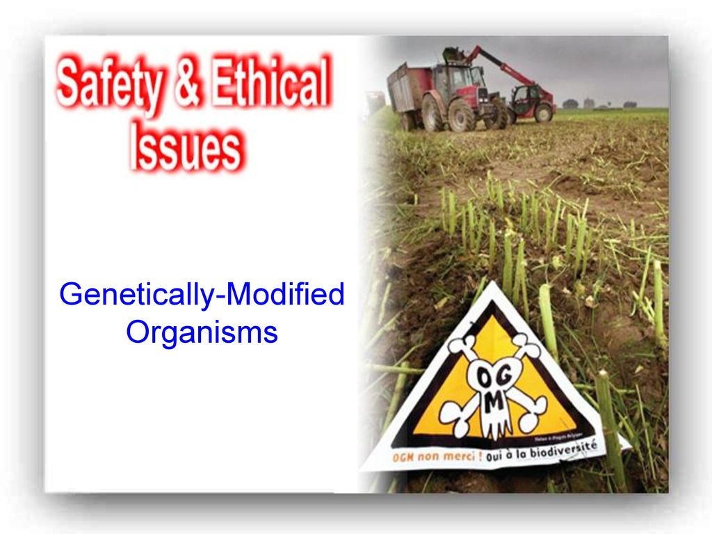 Genetically-Modified Organisms