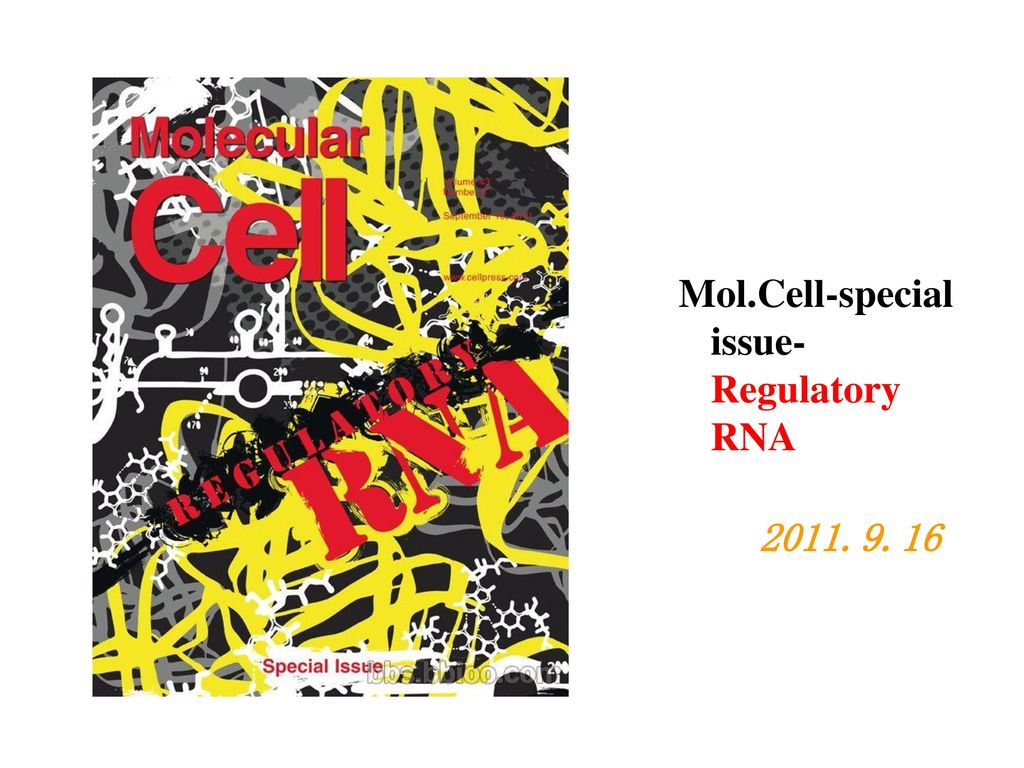 Mol.Cell-special issue- Regulatory RNA