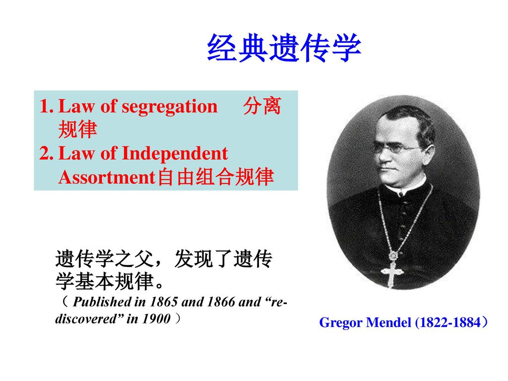 经典遗传学 Law of segregation 分离规律 Law of Independent Assortment自由组合规律