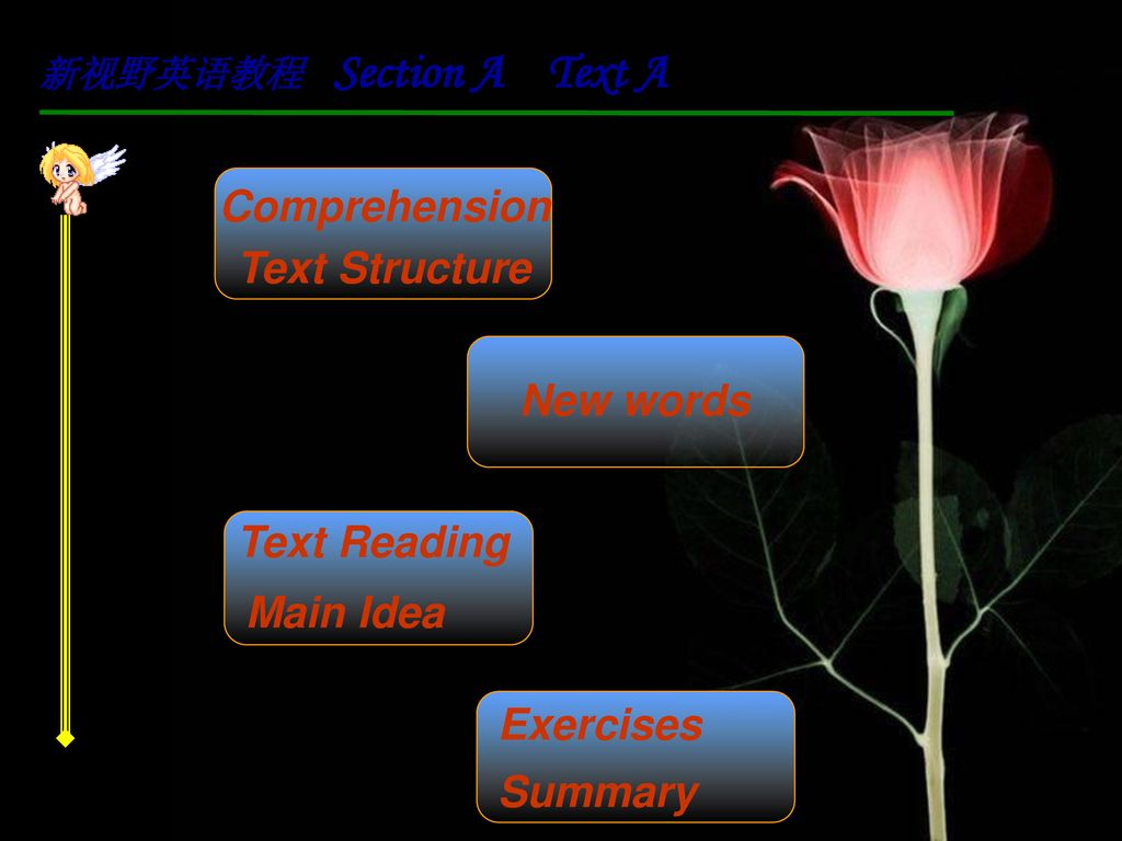 Comprehension Text Structure New words Text Reading Main Idea