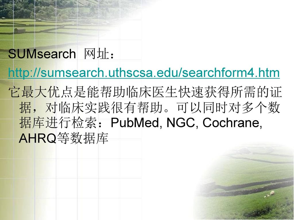 SUMsearch 网址:
