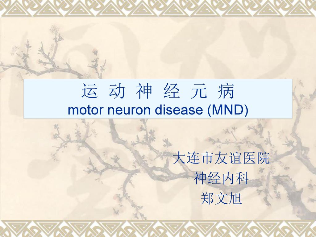 运 动 神 经 元 病 motor neuron disease (MND)