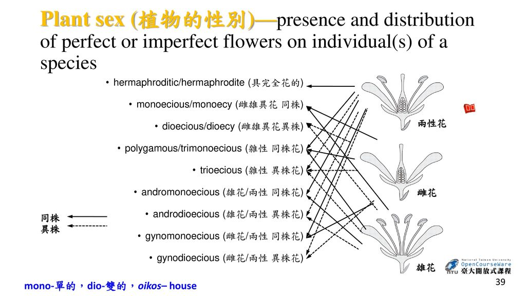 Plant sex (植物的性別)—presence and distribution of perfect or imperfect flowers on individual(s) of a species