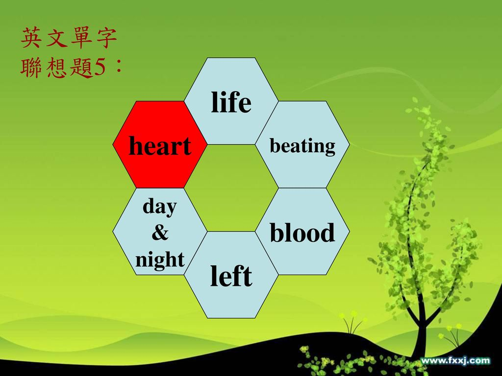 英文單字 聯想題5: life heart beating day & night blood left