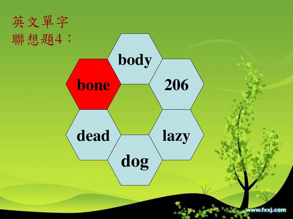 英文單字 聯想題4: body bone 206 dead lazy dog