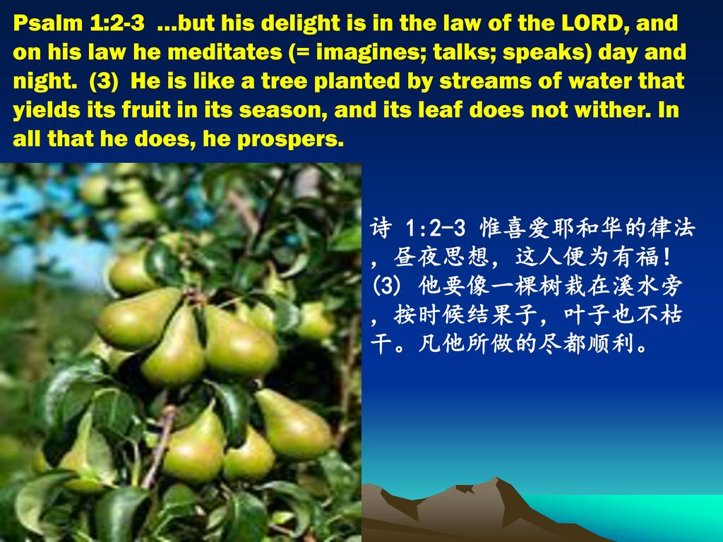Psalm 1:2-3 …but his delight is in the law of the LORD, and on his law he meditates (= imagines; talks; speaks) day and night. (3) He is like a tree planted by streams of water that yields its fruit in its season, and its leaf does not wither. In all that he does, he prospers.