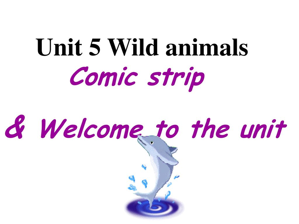 Unit 5 Wild animals Comic strip & Welcome to the unit